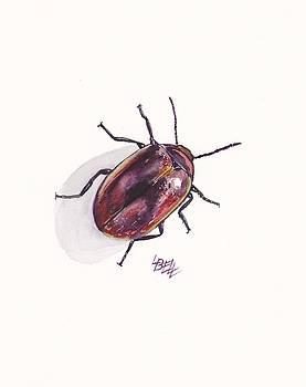 Beetle in my garden by Leonie Bell