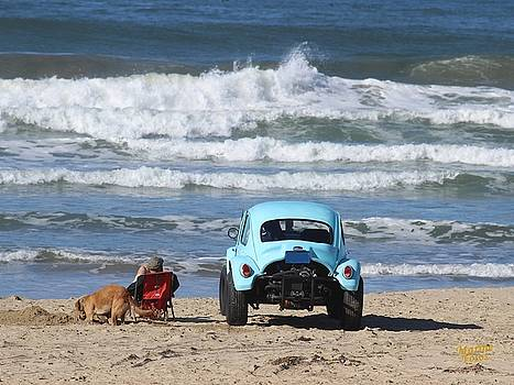 Gary Canant - Beetle on the Beach