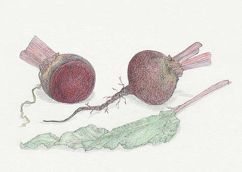 Beets by Tara Poole