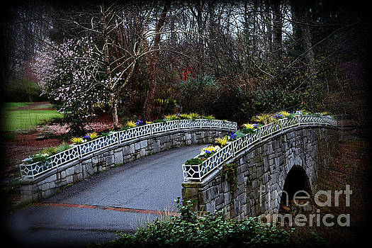 Beginning of Spring Bridge by Eva Thomas