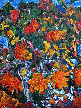 Begonias by Padma Prasad