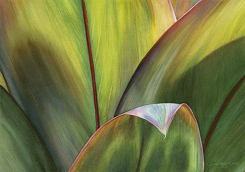 Beguiling Kauai by Sandy Haight