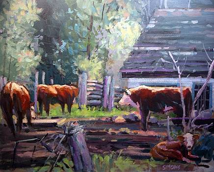 Behind The Barn by Brian Simons