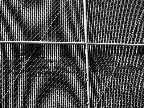 Behind the Fence by Christian Orti