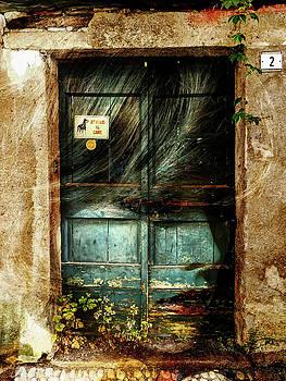 Behind the old door by Gabi Hampe