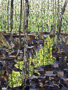 Beidler Forest 1 by Micah Mullen