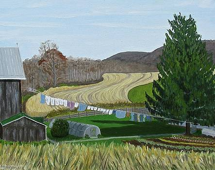 Beiler's View of Egg Hill by Barb Pennypacker