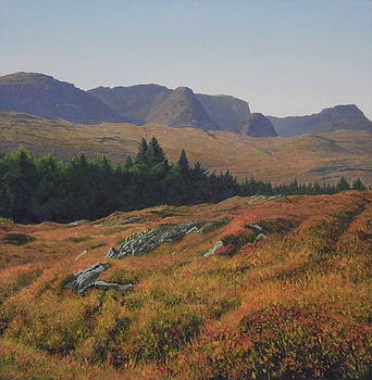 Beinn Bahn Near Kishorn Scotland by Rodger Insh