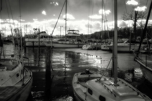 Bell Haven Docks by Paul Seymour