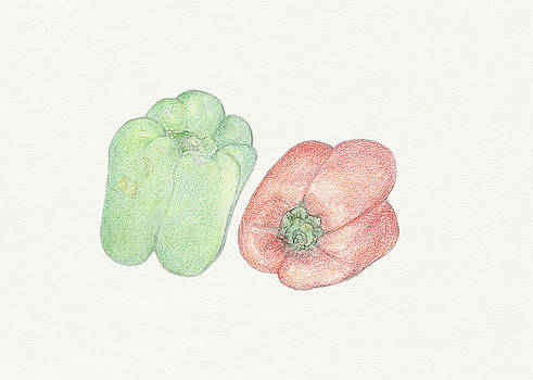 Bell Peppers by Tara Poole