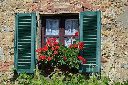 Bella Italian window  by Frank Stallone