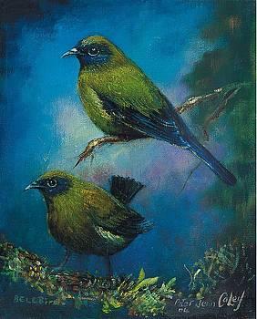 Bellbird Duo by Peter Jean Caley