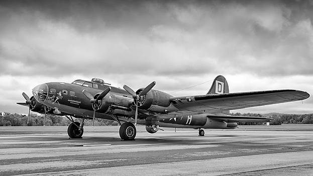 Belle on the ramp by Chris Buff