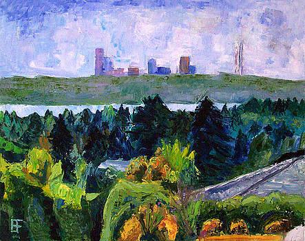 Allen Forrest - Bellevue - Hilltop Road View of Seattle