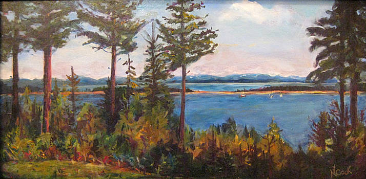 Bellhaven View by Nanci Cook