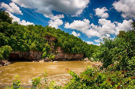 Below Cumberland Falls by Ron Plasencia