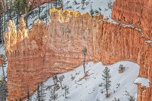 Below the Rim by Mitch Johanson