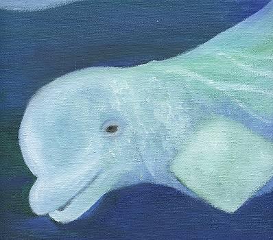 Beluga by Heather Walker