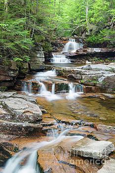 Bemis Brook Falls - Harts Location New Hampshire by Erin Paul Donovan