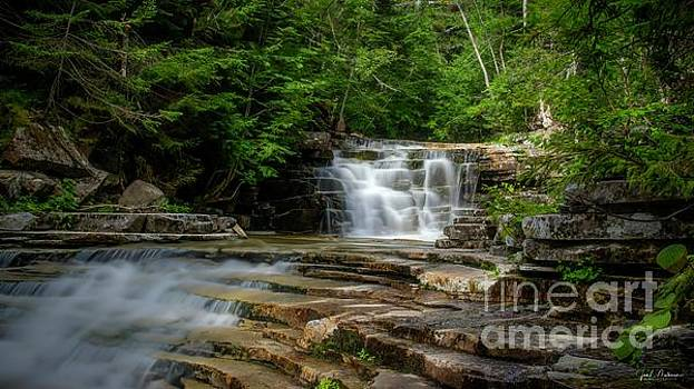 Bemis Brook Falls by Jan Mulherin