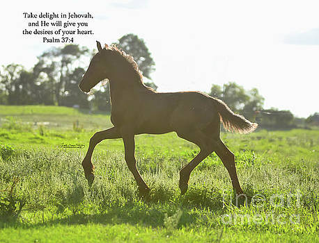 Ben Psalm 37 4 JW by Lori Ann  Thwing