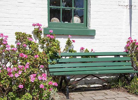 Ramunas Bruzas - Bench Among Flowers