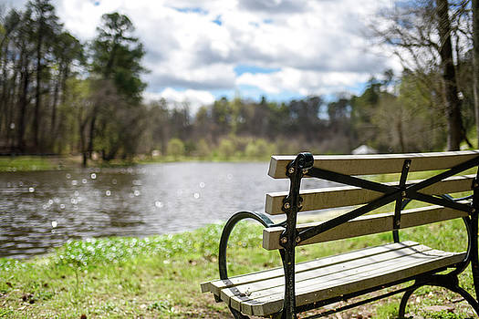Bench by the Pond by Doug Ash