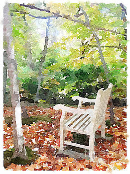 Bench in Autumn Woods by Janet Dodrill