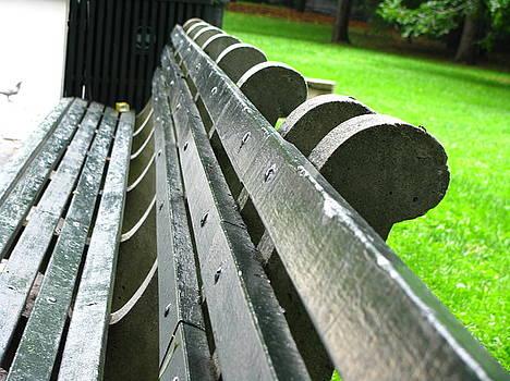 Bench in Harlem by Oksana Pelts