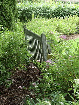 Bench by Sue Midlock