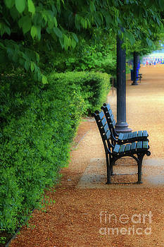 Benches at the National Mall by Elizabeth Dow