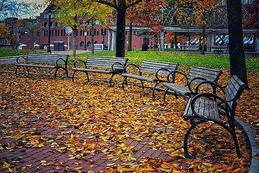 Benches in Fall by SoxyGal Photography