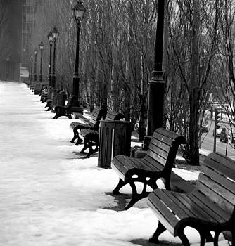 Benches  by Jeff  Reynolds