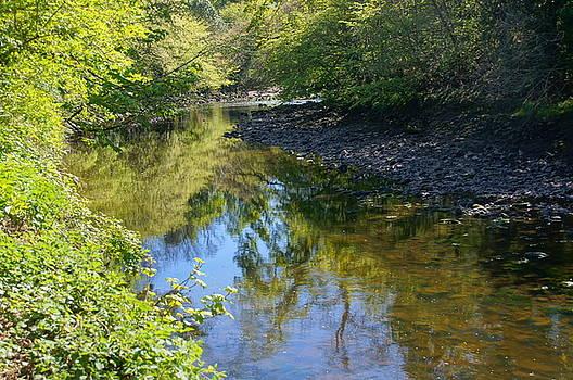 Bend In the River by Nik Watt