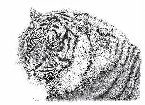 Bengal Tiger by Remrov