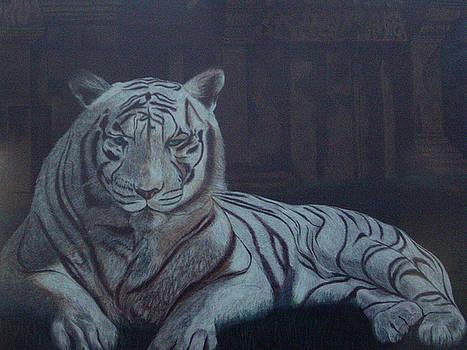 Bengala Tiger by Fanny Diaz