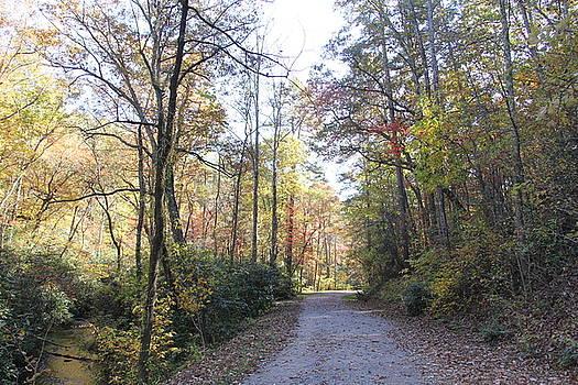 Allen Nice-Webb - Bent Creek Road