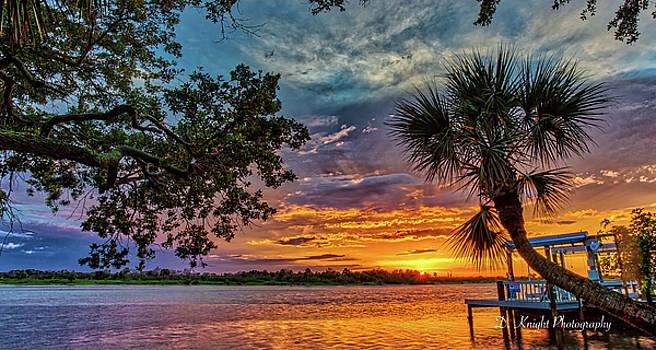 Bent Palm Sunset by Dillon Kalkhurst