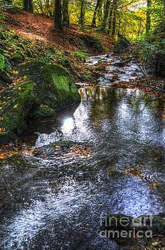 Bentley Brook autumn by Steev Stamford