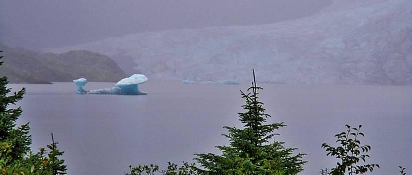 Ice Berg by Martin Cline