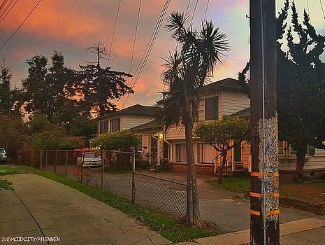 Berkeley Tropic by Philip Hennen