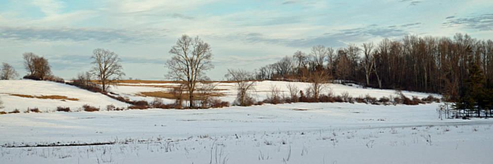 Berkshire Meadow - Winter Panoramic by Geoffrey Coelho