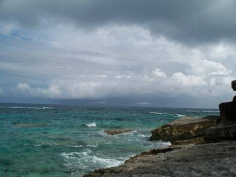 Bermuda Blue by Polly Rickman