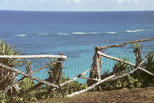 Heather Kirk - Bermuda Fence and Ocean Overlook