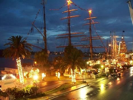 Bermuda In Lights by Polly Rickman
