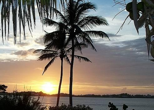 Bermuda Sunset by Polly Rickman