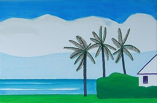 Bermuda Variations  by Dick Sauer