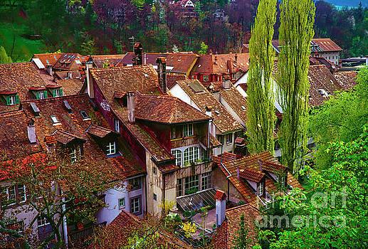 Bern Switzerland Roof Tops  3460600120 by Tom Jelen