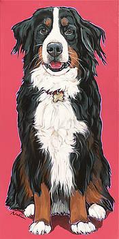 bernese Mountain Dog Beau by Nadi Spencer