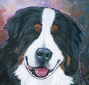 Bernese Mountain Dog kona by Nadi Spencer